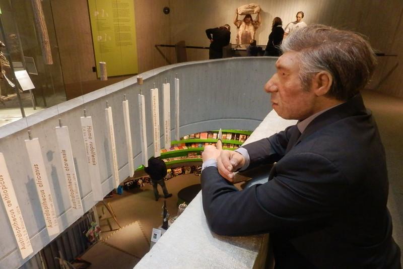 Neanderthal Museum Innen