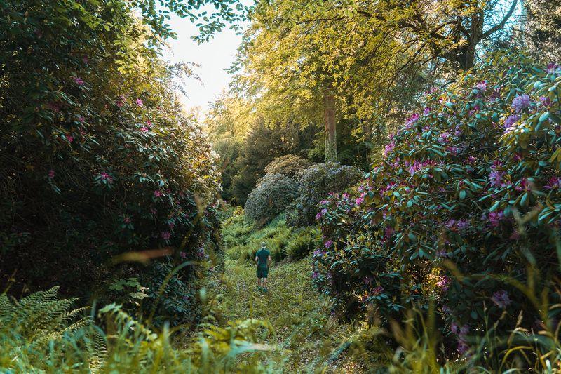 Englischer Garten am Schloss Dyck