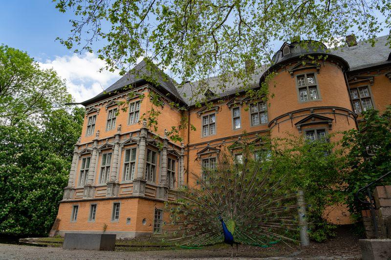 Schloss Rheydt Südfassade