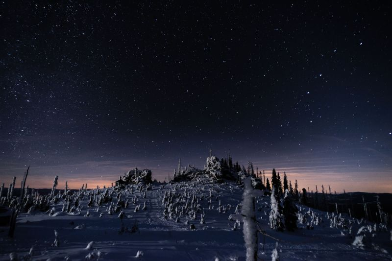 Bayerischer Wald im Winter bei Nacht